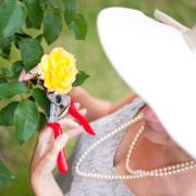 rosie-gardening-02-smaller